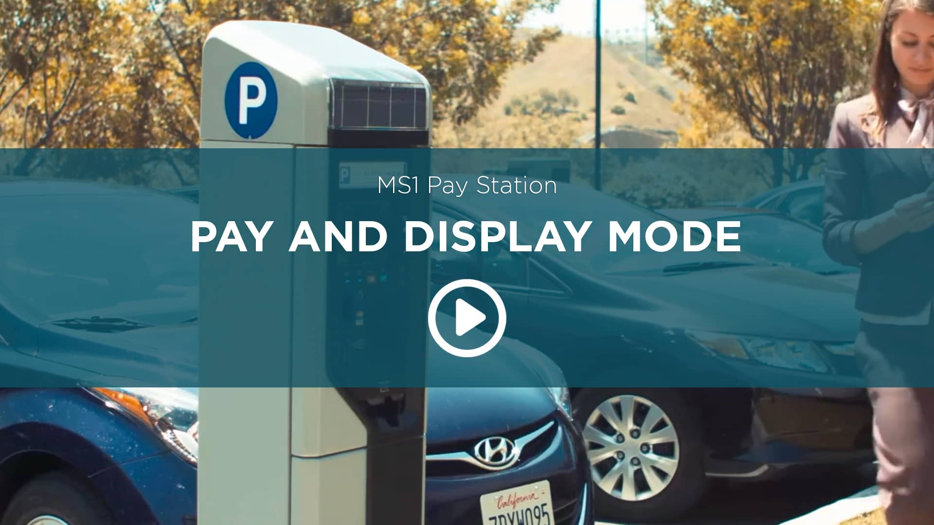MS1 Pay-And-Display